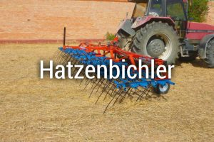 https://segues.es/wp-content/uploads/2018/10/Hatzenbichler-ESP-300x200.jpg